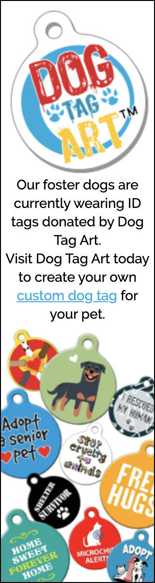 Dog Tag Art Skyscraper Ad